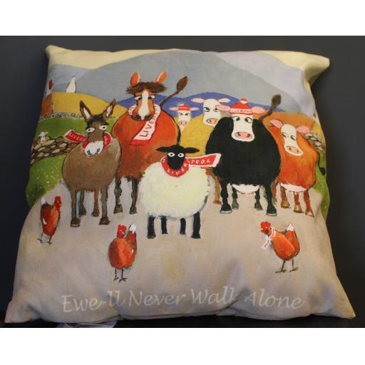 Thomas Joseph cushions