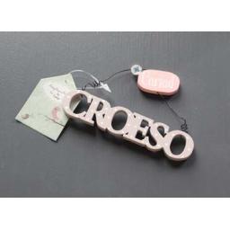 Hanging croeso.jpg