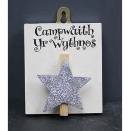 Campwaith yr wythnos.jpg