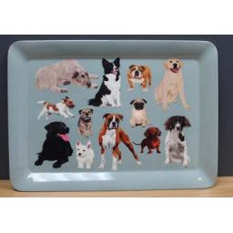 Dog Tray.jpg