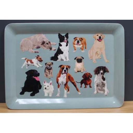 Dog Tray